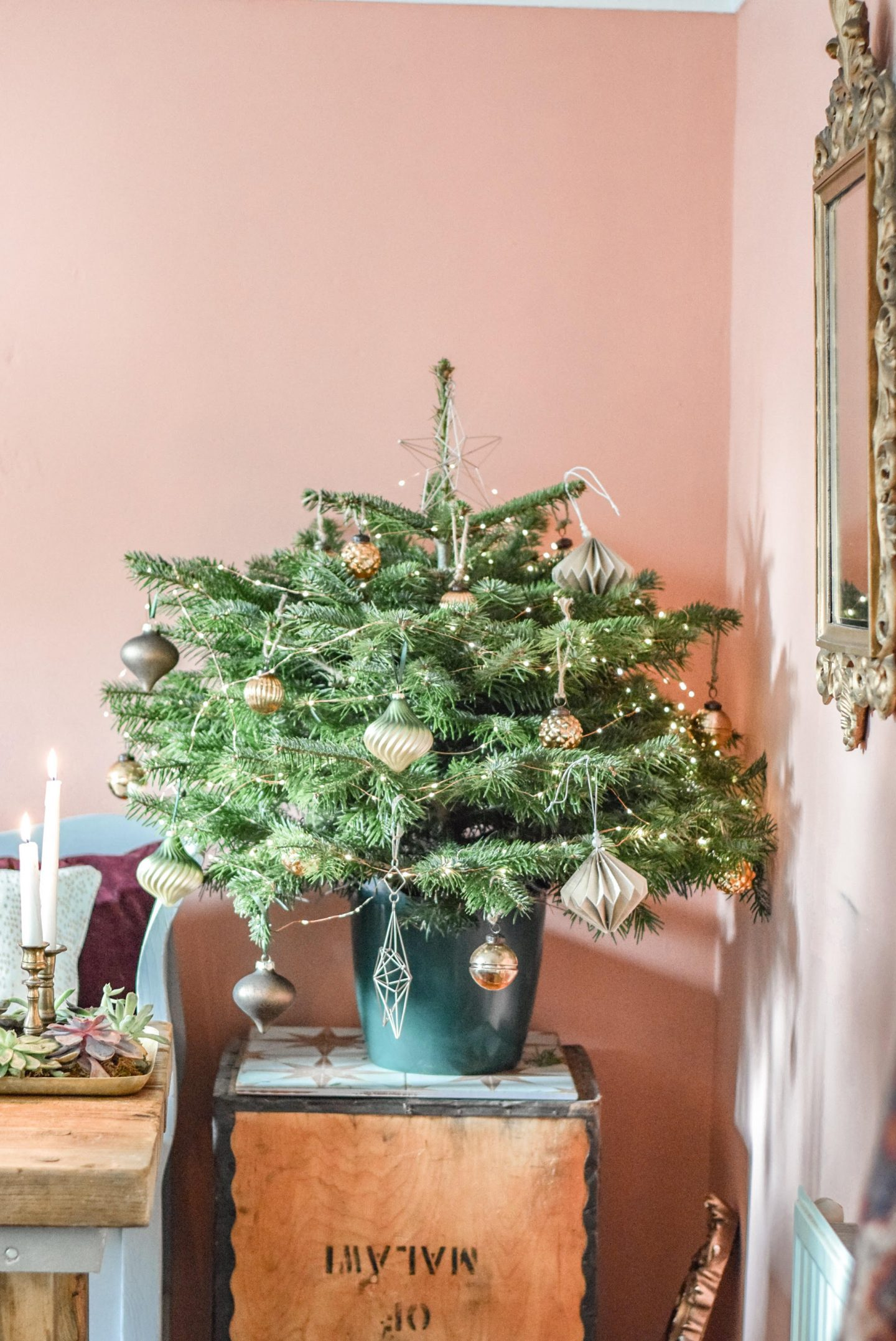 Decorate with Dobbies this Christmas…